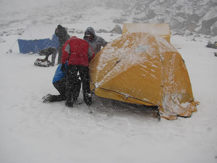 dingogma_snow_camp